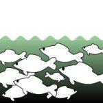 Pêche de nuit les 15 et 16 août 2020